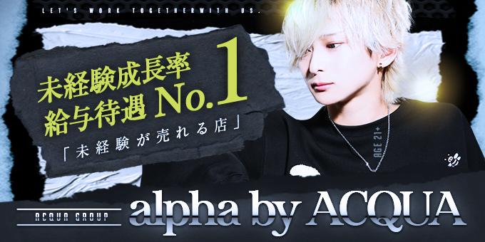 歌舞伎町ホストクラブ「alpha by ACQUA」の求人宣伝です。