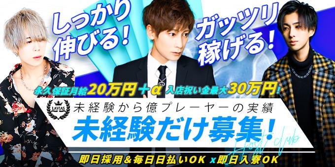 歌舞伎町のホストクラブ「LAVIAS」の求人宣伝です。
