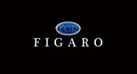FIGAROのロゴ